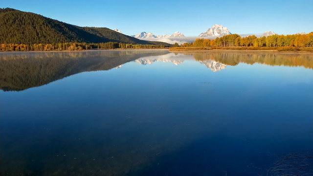 Sunny Day Oxbow Bend Reflections