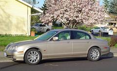 bentley continental flying spur(0.0), jaguar s-type(0.0), automobile(1.0), automotive exterior(1.0), jaguar(1.0), executive car(1.0), wheel(1.0), vehicle(1.0), rim(1.0), mid-size car(1.0), compact car(1.0), jaguar s-type(1.0), sedan(1.0), land vehicle(1.0), luxury vehicle(1.0),