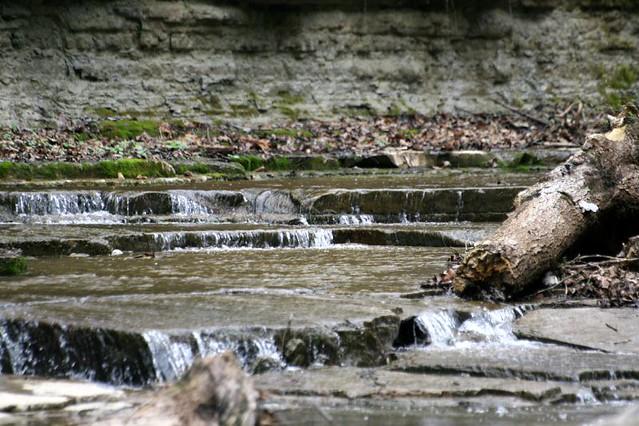 Kentucky creek