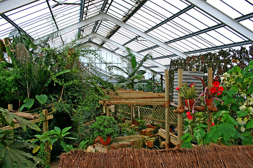 Tropical area at Woodside Falconry