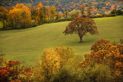 paisagem Connecticut EUA