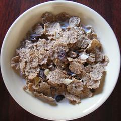 coconut(0.0), apple crisp(0.0), dessert(0.0), muesli(0.0), snack food(0.0), breakfast cereal(1.0), meal(1.0), breakfast(1.0), produce(1.0), food(1.0), dish(1.0), cereal(1.0), cuisine(1.0),