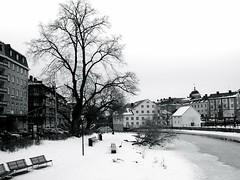 Uppsala in b&w