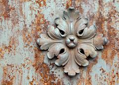 Rust - Photo of L'Isle-sur-Serein