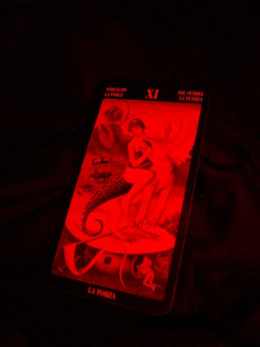 428257586 d038b31d7d How accurate are Tarot cards? What should one look for when trying to find a good reader?