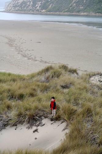 limantour, estero, estuary, point reyes, beach IMG_0438