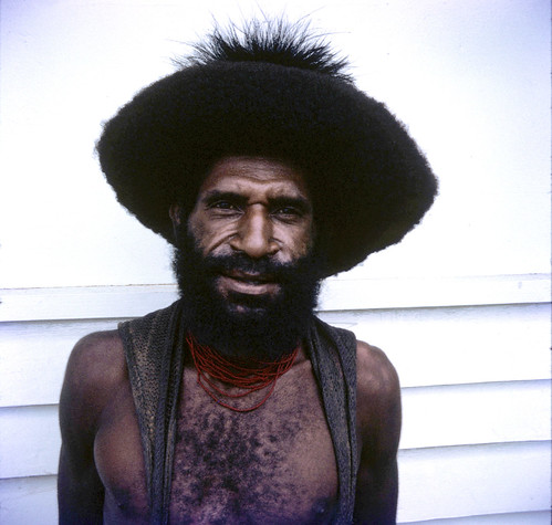 New Guinea Highland HairDo