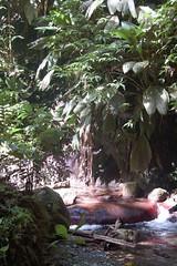 La rivière Trois Bras