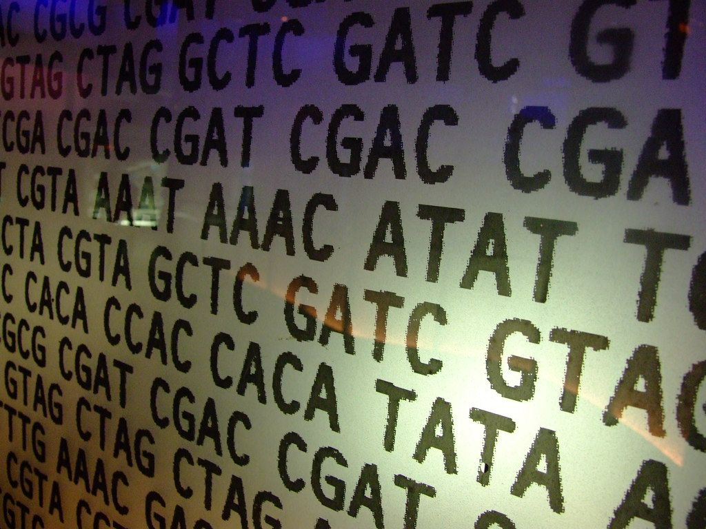 Genetic code - If you use it pls leave a comment/fav