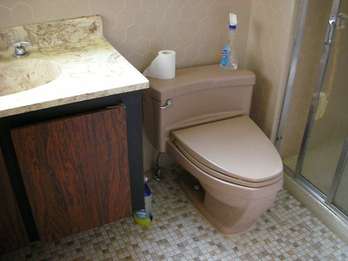 1969 fawn beige toilet a photo on flickriver. Black Bedroom Furniture Sets. Home Design Ideas