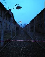 Campos de concentración - Concentration Camps