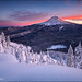 Mt. Hood Majesty