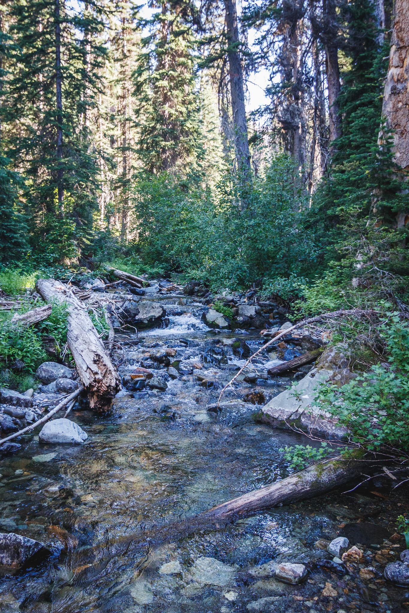 Goat Creek crossing