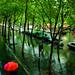Rain forest in Paris ©Éole