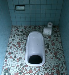 swimming pool(0.0), bathtub(0.0), urinal(0.0), bathroom(0.0), floor(1.0), toilet(1.0), room(1.0), public toilet(1.0), plumbing fixture(1.0), toilet seat(1.0), bidet(1.0), flooring(1.0),