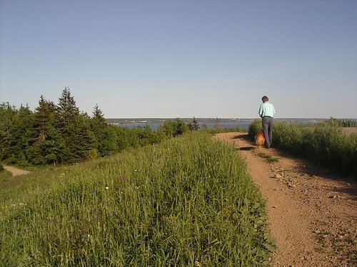 summer dog canada nature walking island novascotia view path bluesky hike trail capebreton nuanc