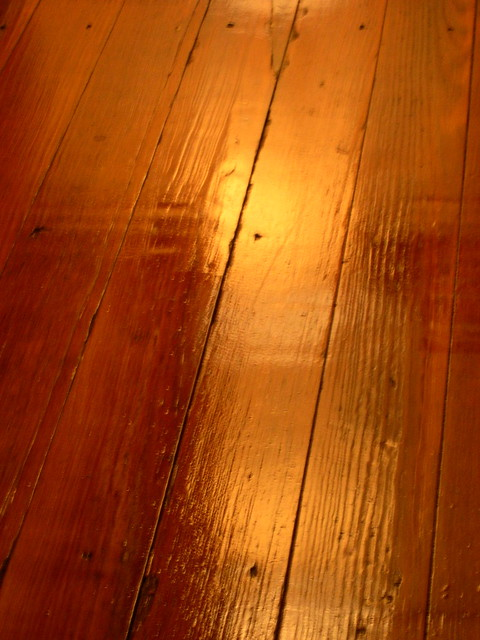 Look at that shine how did i ever live without hardwood for Hardwood floors not shiny