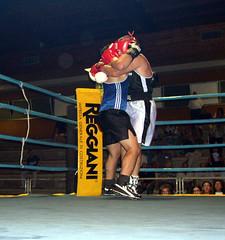 striking combat sports, boxing ring, professional boxing, individual sports, contact sport, sports, combat sport, shoot boxing, sanshou, strike, amateur boxing, boxing,