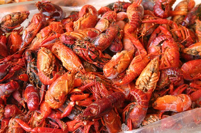 Crayfish vs. Crawfish vs. Crawdad | Flickr - Photo Sharing!