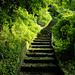 Green stairs to...