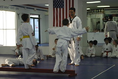 hapkido(1.0), individual sports(1.0), contact sport(1.0), sports(1.0), tang soo do(1.0), combat sport(1.0), martial arts(1.0), karate(1.0), taekkyeon(1.0), japanese martial arts(1.0), shorinji kempo(1.0),