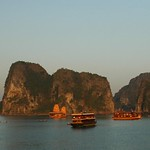 Anchored Boats - Halong Bay
