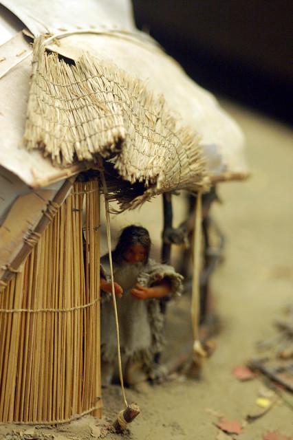 Header of Amerindian