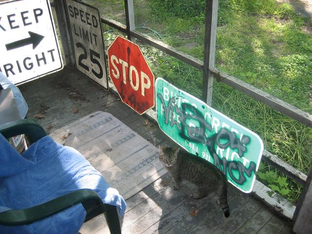 Cat Proof Screens Home Depot