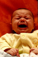 infant drama    MG 9450
