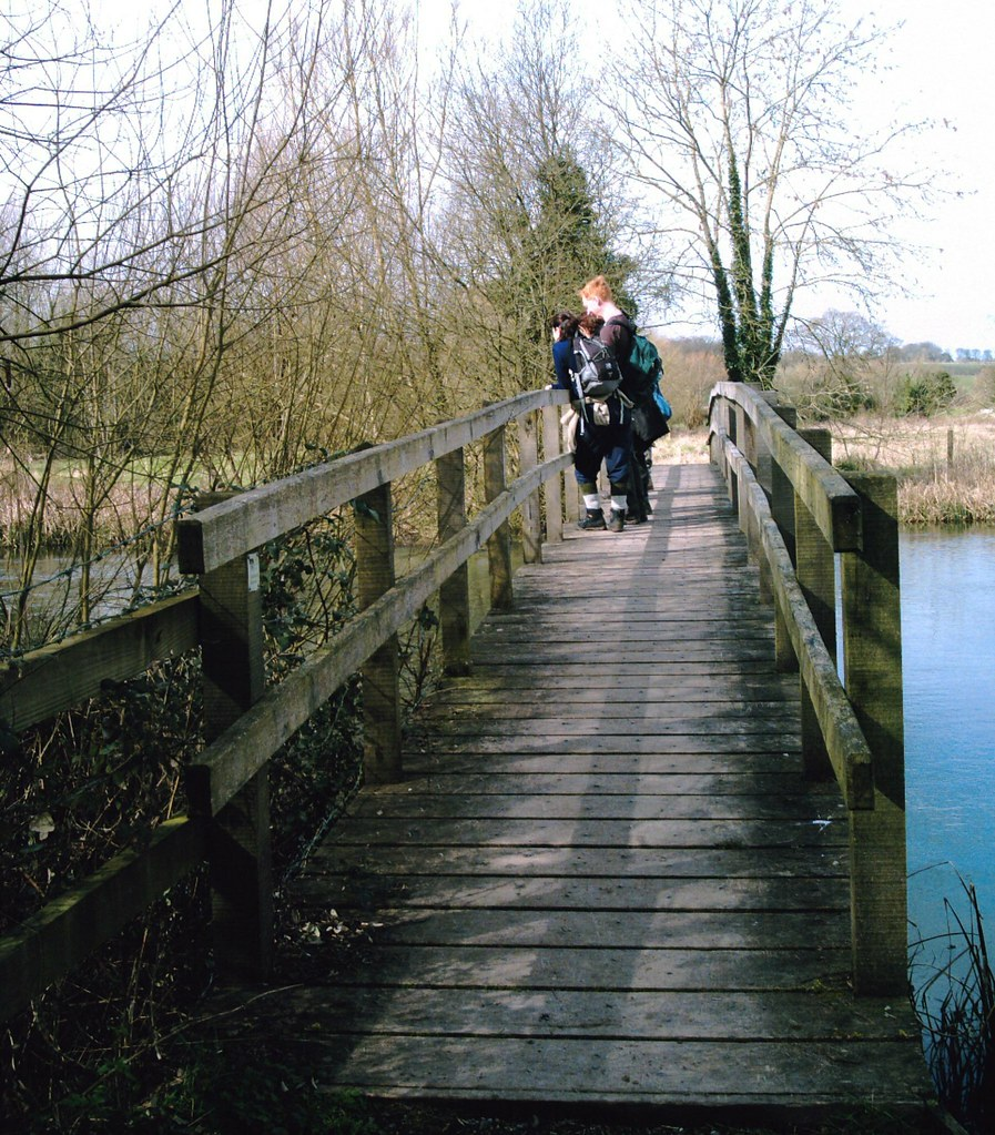 Bridge over the River Test Rare sighting of the Lesser Redpoll(?) near Tufton Hants ViviCam 5.199mp
