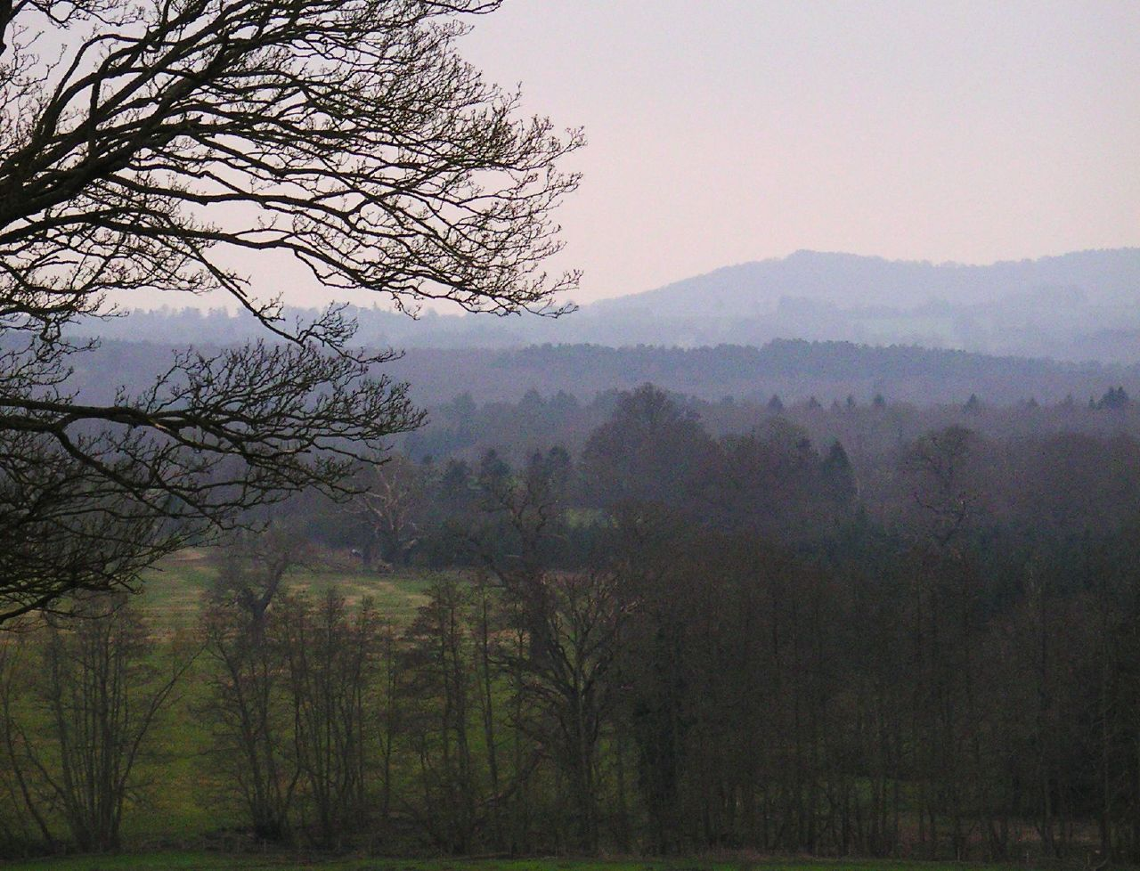 Book 1, Walk 12, Farnham to Godalming 4 A view from Peper Harow, 24 March '07.