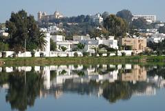 Tunis cartage