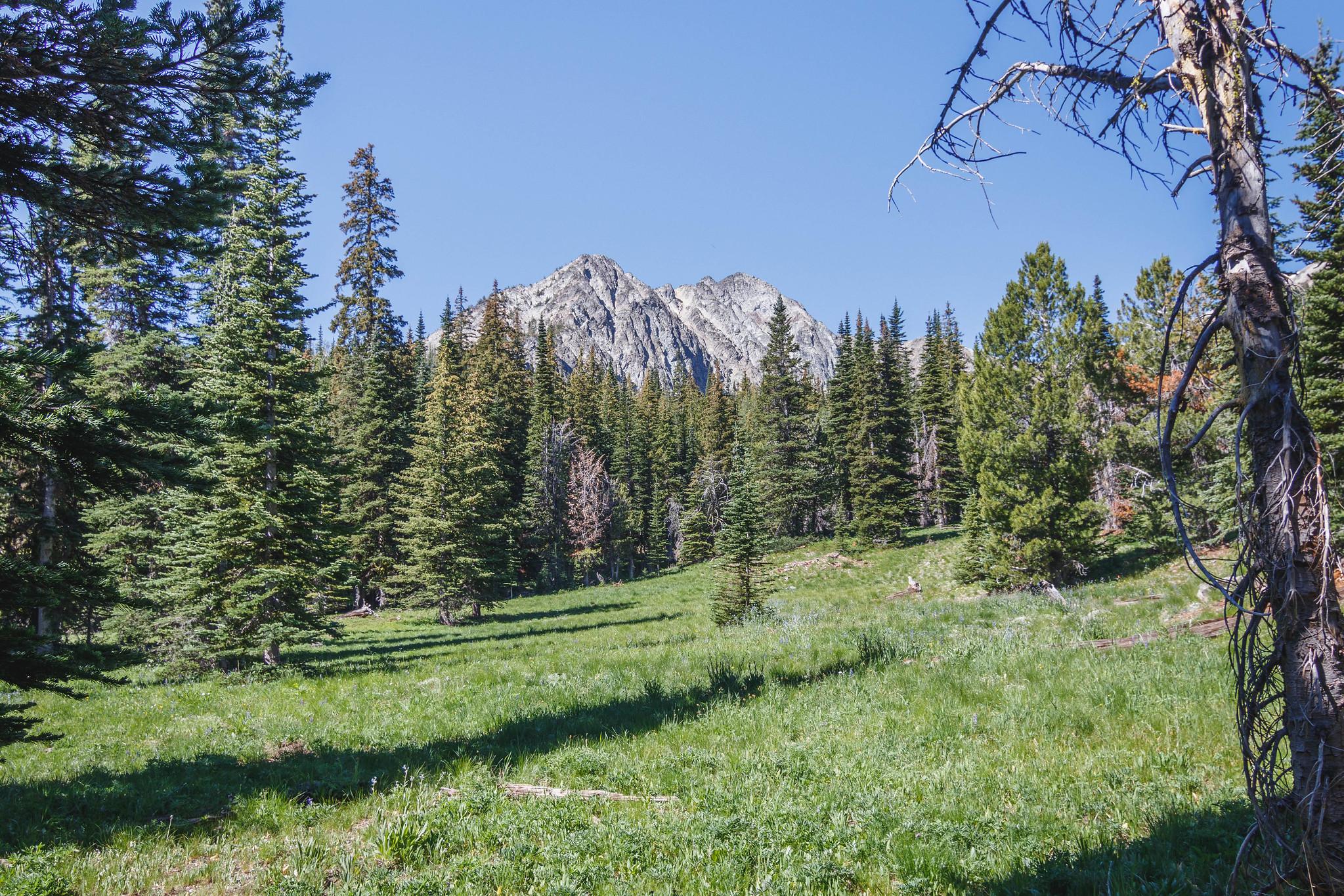 Bullhorn Peak