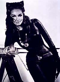 Catwoman S Favorite Cat Type Big
