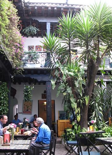 Disfrutando de la vida luisa de xicotencatl de for Casa jardin guatemala