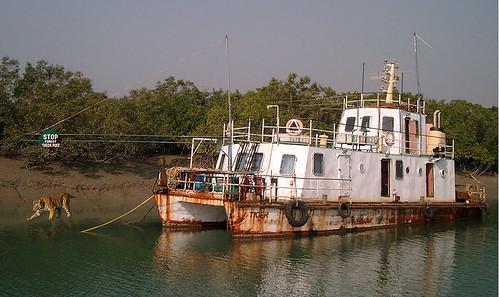 India_2006 417