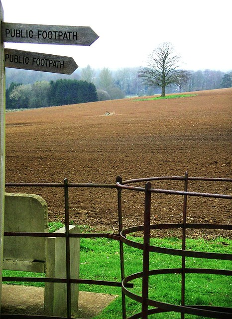 Book 1, Walk 12, Farnham to Godalming 5