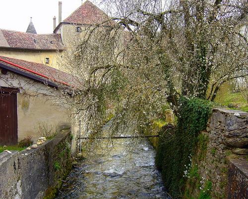 river switzerland spring afternoon blossom stones sunday peaceful pale priory bucolic palmsunday april1 romandie romainmôtier palesky mywinners nozon bfv1 6setromainmôtier 1j1t