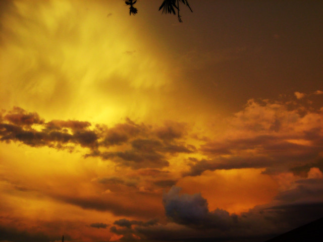 Yellow Sky Flickr Photo Sharing
