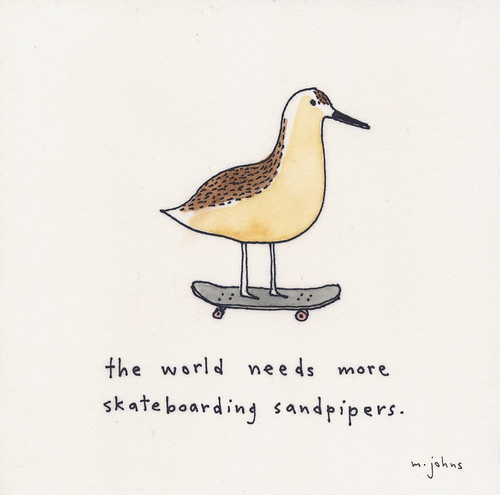 the world needs more skateboarding sandpipers
