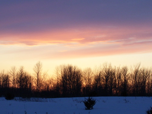 sunset tree melanie sillouette keekeelouise