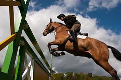 Aldershot Military horse Show 2010