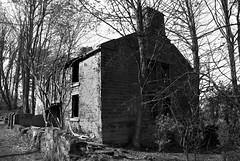 Quarry Cottage ruins