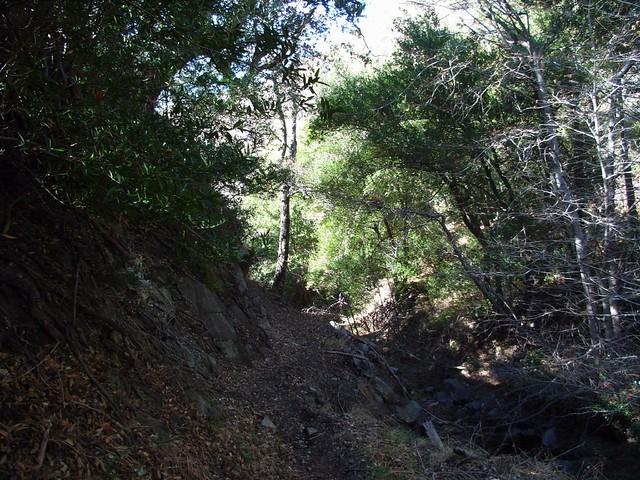 Condor Peak via Trail Canyon 048