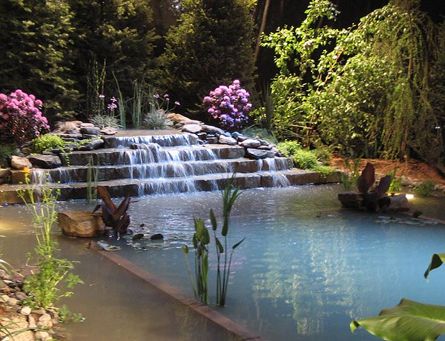 Waterfall swimming pool flickr photo sharing for Self cleaning pond