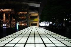 Floor of Fluorescent