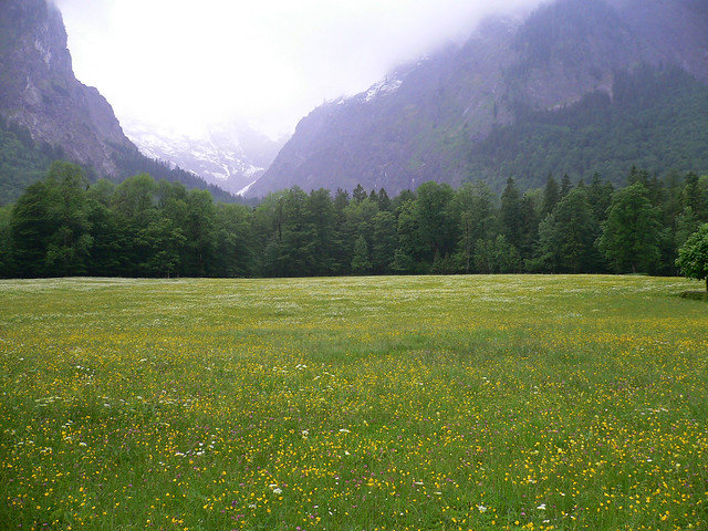 Meadow and Mountains | Flickr - Photo Sharing!