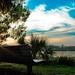 bench at kraft azalea by MorningThief581