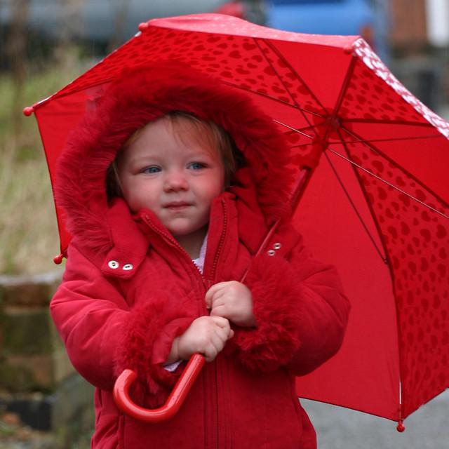 Red Umbrella Crop