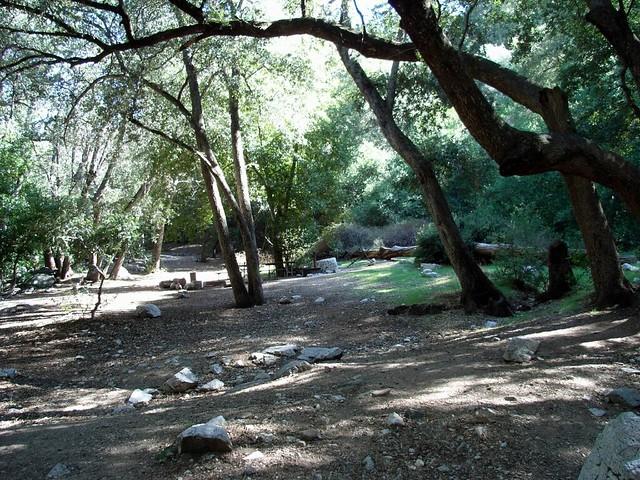 Bear Canyon Trail 022